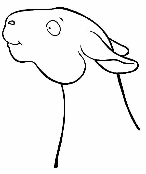 Cabeza de oveja para colorear. Teby y Tib - Portal Infantil